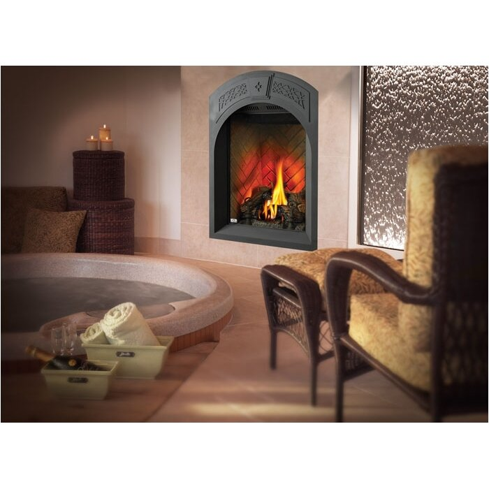 Napoleon Tureen Direct Vent Wall Mount Gas Fireplace Allmodern
