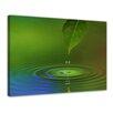 Castleton Home Waterdrop II Framed Photographic Print