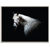 Artist Lane 'Horse 1' by Joe Vittorio Photographic Print Wrapped on Canvas