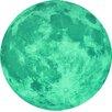 Walplus Glow in Dark Moon Wall Sticker