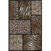 Donnieann Company Skinz 70 Mixed Brown Animal Skin Prints