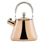 Image Result For Tea Kettle For Induction Cooktopa