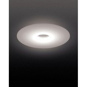 Foscarini Ellepi Wall Ceiling Light Allmodern