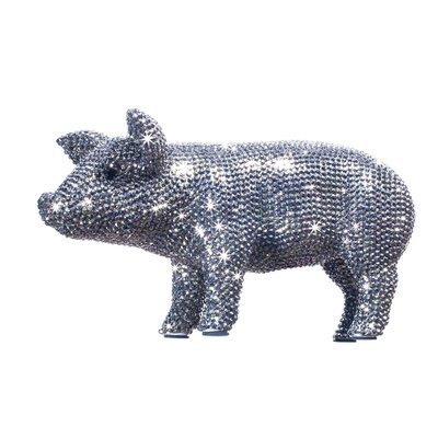 Interior Illusions Rhinestone Piggy Bank Reviews Wayfair