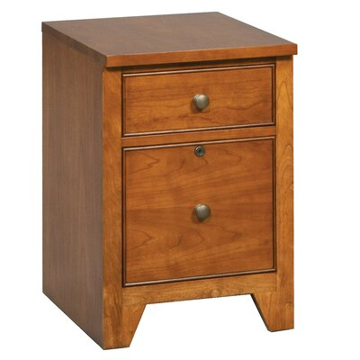 Alcott Hill Chester 2 Drawer Vertical File