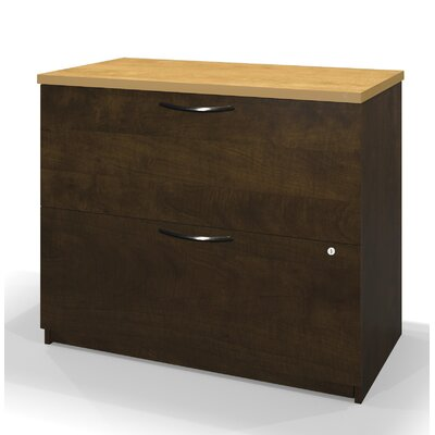 Darby Home Co Clearview 2 Drawer Lateral File