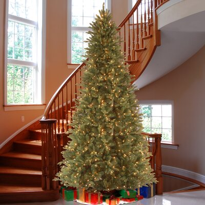 National Tree Co. Tiffany Fir 9u0027 Green Slim Artificial Christmas Tree With  800 Pre Lit Clear Lights With Stand U0026 Reviews | Wayfair