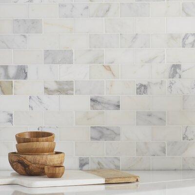 Msi Calacatta Gold Mounted 2 X 4 Marble Subway Tile In White Reviews Wayfair
