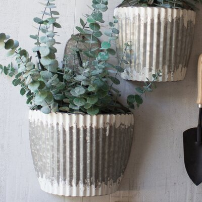 Metal Wall Planter kalalou distressed 2 piece metal wall planter set & reviews | wayfair