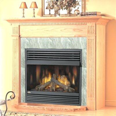 Napoleon Vent Free Wall Mount Gas Fireplace Reviews Wayfair