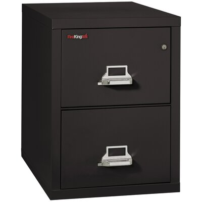 FireKing Fireproof 2-Drawer Ve..