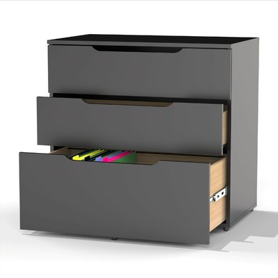 Latitude Run Darla 3-Drawer Filing Cabinet