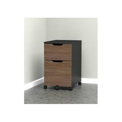 Latitude Run Darla 2-Drawer Mobile File Cabinet