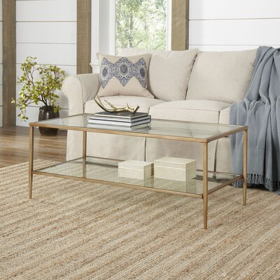Birch Lane Nash Double Shelf Coffee Table
