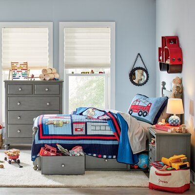 Birch Lane Kids Hatcher Panel Bed