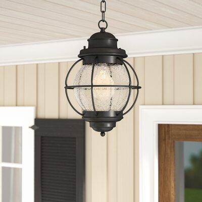 Beachcrest Home Cason 1 Light Outdoor Hanging Lantern U0026 Reviews   Wayfair