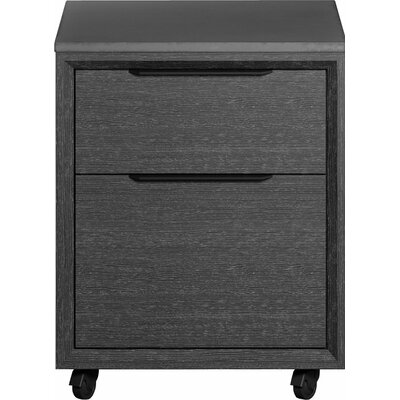 Modloft Amsterdam 2-Drawer Mobile Vertical Filing Cabinet