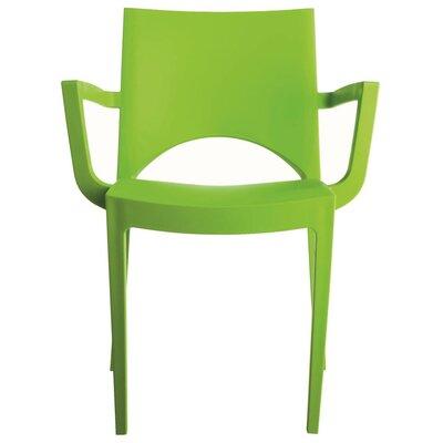 Creative Furniture Paris Arm Chair