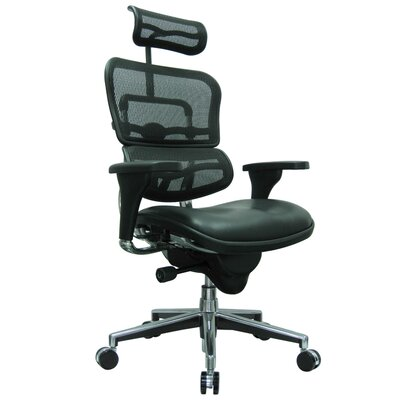 Eurotech Seating Ergohuman High-Back Mesh..