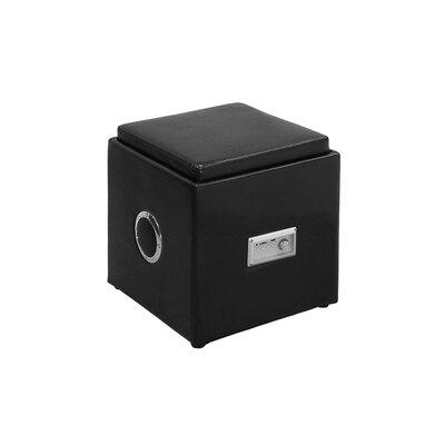 Zipcode™ Design Winchester Leather Speaker Ottoman