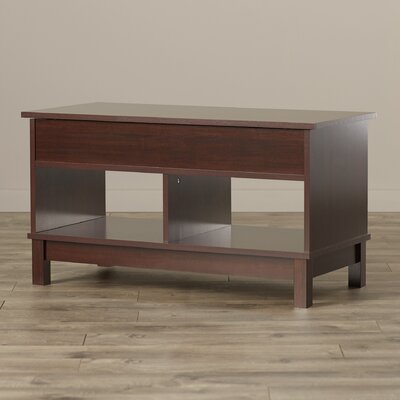 Andover Mills Aldreda Coffee Table with Lift Top