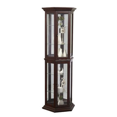 Darby Home Co Arbor Lake Curio Cabinet