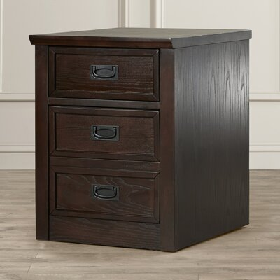 Three Posts Barrville 2 Drawer Filing Cabinet