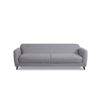 Mercury Row Procyon Sleeper Sofa