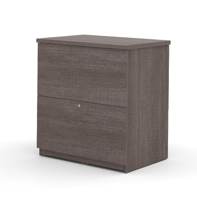 Red Barrel Studio Volkswagen Standard 2-Drawer Lateral File