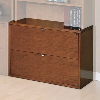 Darby Home Co Lemasters 2 Drawer File