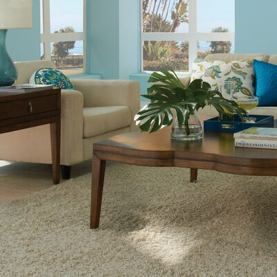 Darby Home Co Petrey Coffee Table