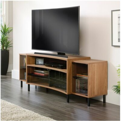 Brayden Studio Bracy Entertainment Credenza TV Stand