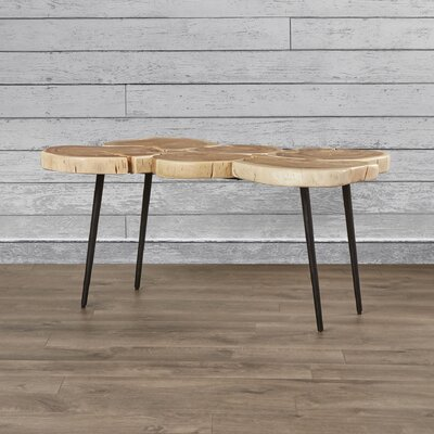 Loon Peak Altus Coffee Table