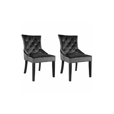House of Hampton Leibowitz Side Chair (Set of 2)