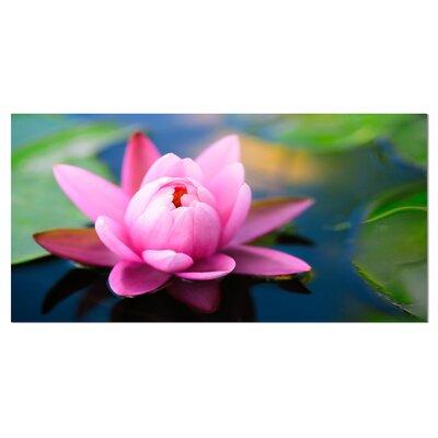 Designart large lotus flower in the pond photographic print on designart large lotus flower in the pond photographic print on wrapped canvas reviews wayfair mightylinksfo