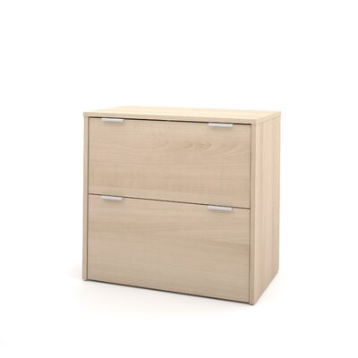 Latitude Run Luther 2 Drawer Lateral File