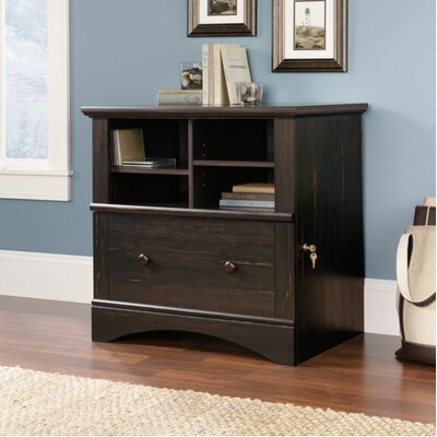 Beachcrest Home Pinellas 1 Drawer File Cabinet