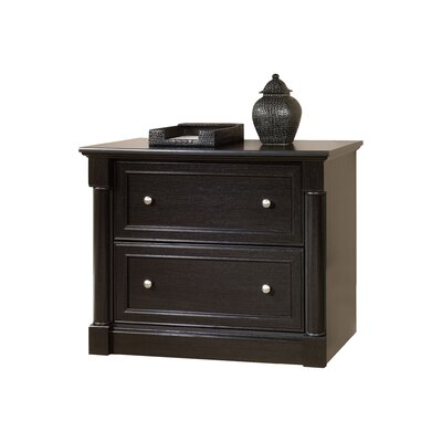 Darby Home Co Hennepin 2 Drawer Lateral File
