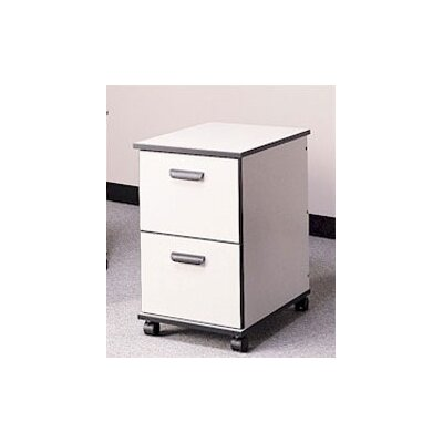 Fleetwood Solutions 2-Drawer Mobile File Cab..