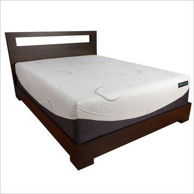 Sealy Hybrid 14'' Memory Foam Mattress