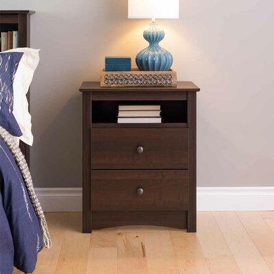 Latitude Run Penelope 2 Drawer Nightstand