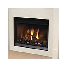 Modern Napoleon The Torch Direct Vent Wall Mount Gas Fireplace Allmodern