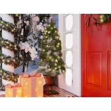Potted Christmas Trees You Ll Love Wayfair