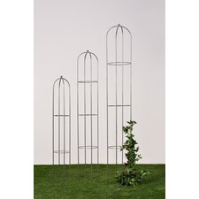 Rankhilfe Obelisk-Set Clemens