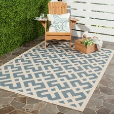 Flat Woven Rugs You Ll Love Wayfair