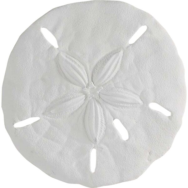 Asa Sand Dollar Wall Decor Amp Reviews Joss Amp Main