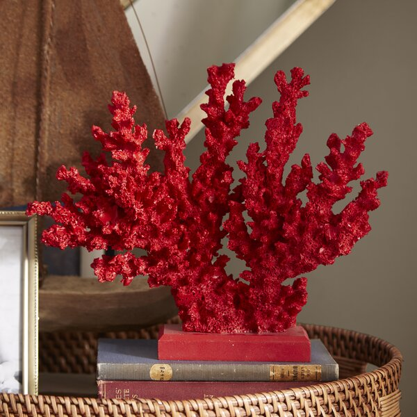 Red Coral Decor & Reviews  Joss & Main. Christmas Indoor Decorations. Decorative Cabinet. Rustic Wall Decor Ideas. Lamps For Girl Room. Glam Wall Decor. Decorated Pillar Candles. Decorative Walls. Large Decorative Baskets