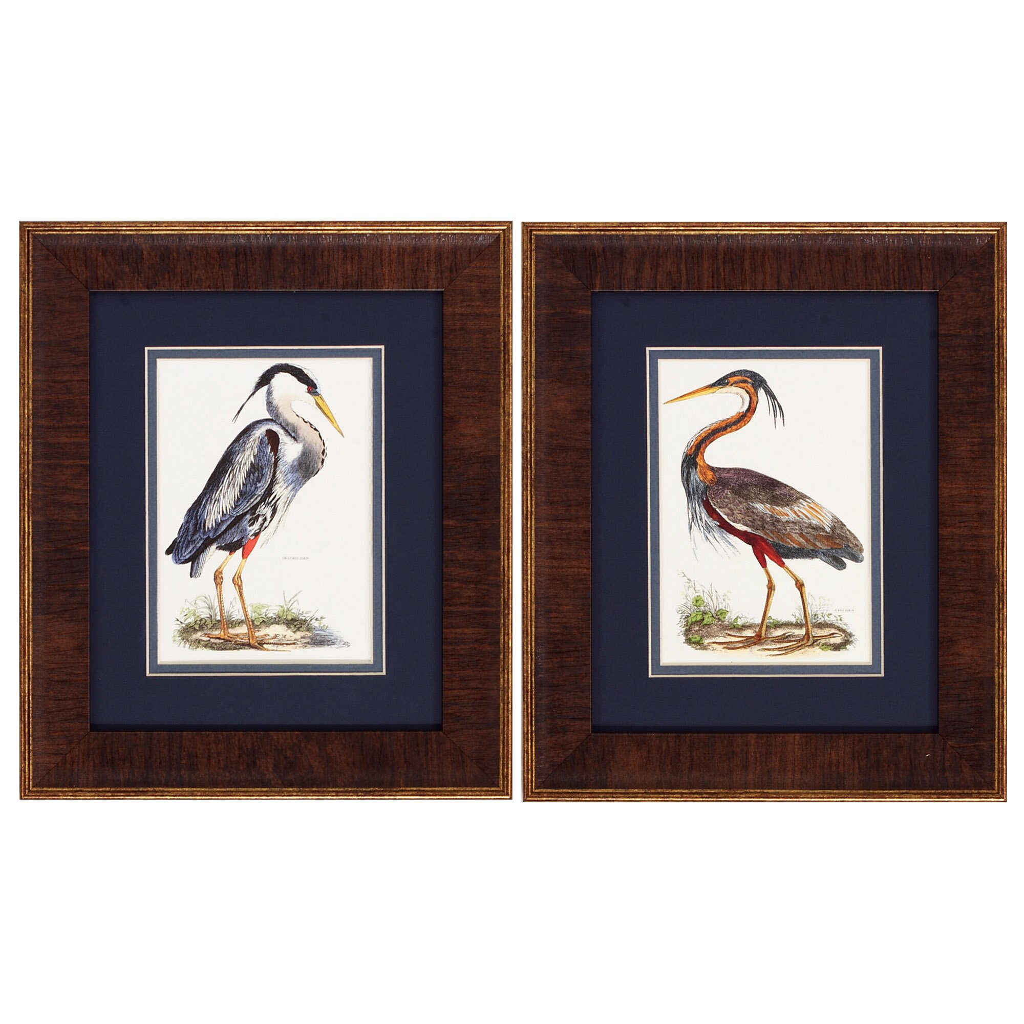 Propac Images Heron 2 Piece Framed Graphic Art Set Reviews Wayfair