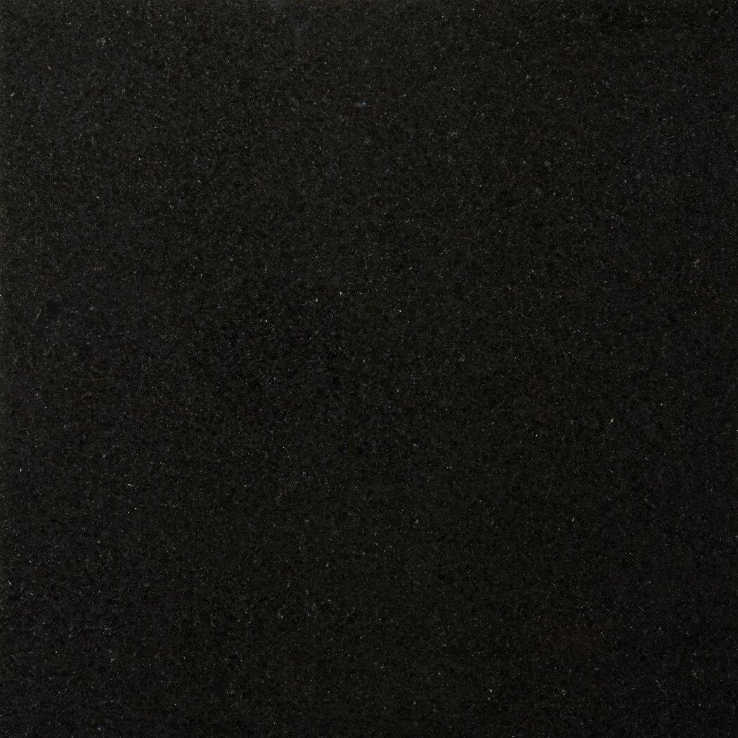 Emser Tile Granite 18 X 18 Field Tile In Absolute Black