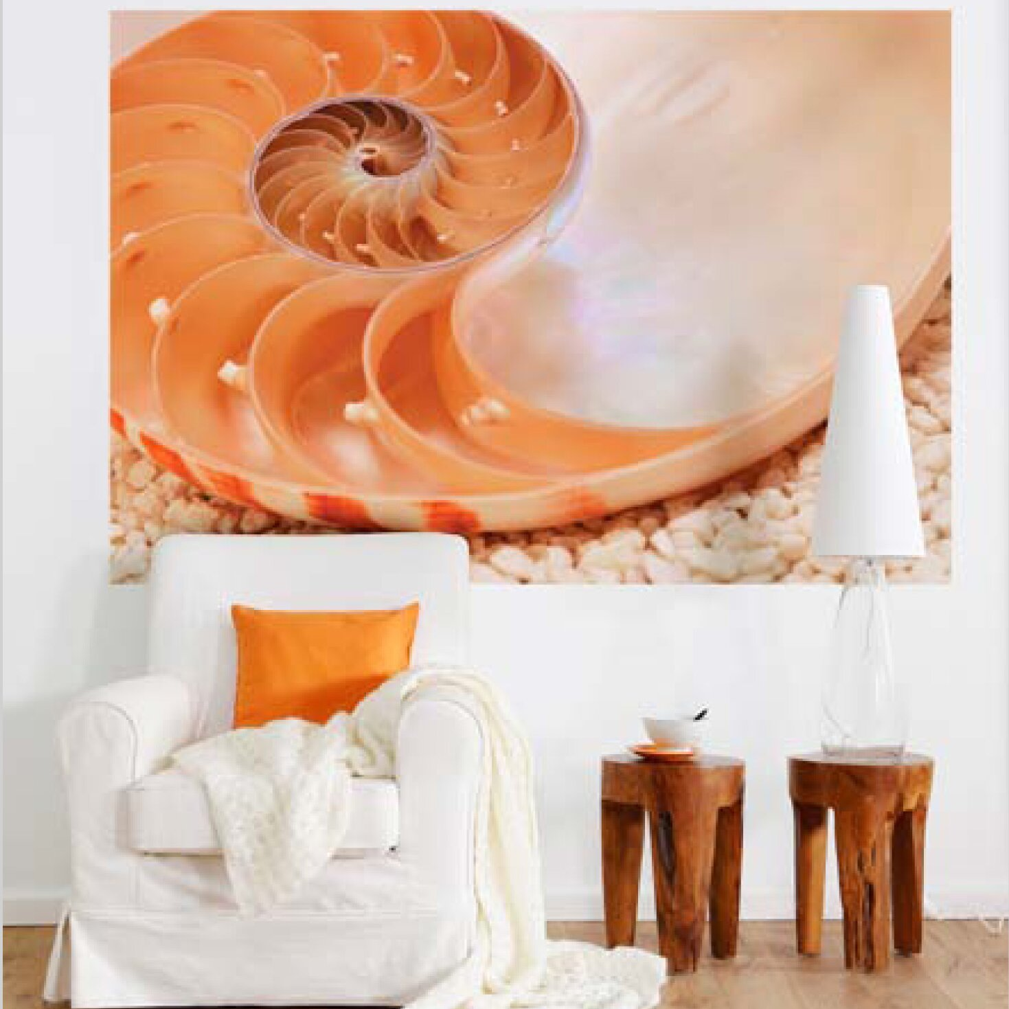Brewster home fashions komar nautilus wall mural wayfair for Brewster birch wall mural